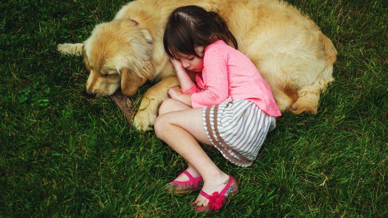 Кстати замечено, что качество жизни детей с этим диагнозом значительно улучшают собаки